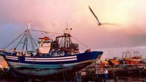 发改委外资司会见克罗地亚驻华大使 就推动里耶卡港项目合作进行交流