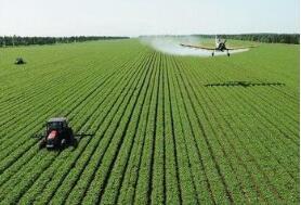秋粮收获近尾声 全年粮食有望保持1.3万亿斤以上