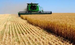 夏粮丰产农民增收 农业农村部谈上半年三农发展七大亮点